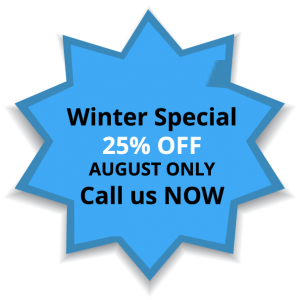 WinterSpecial 25% Off August Only copy
